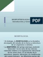 Morfofisiologia Humana 1 Clase1 1219698541104571 9