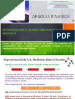 III. Rep. Arboles Binarios Em 1 21