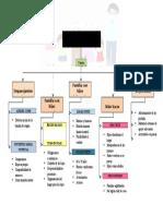 Ciclo Vital de La Familia- Mapa Conceptual