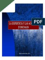 6 Experticia y Acciones 93-118