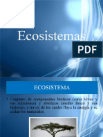 19349409-Ecosistemas