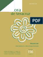 156 Gutierrez