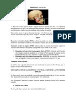 DIMENSIÓN VERTICAL Resumen (Autoguardado)
