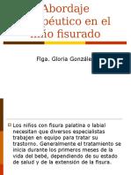 abordaje_fisura_1_