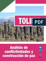 Undp Co Tolimaconflictividades 2015