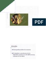 ALMIDON-presentacion