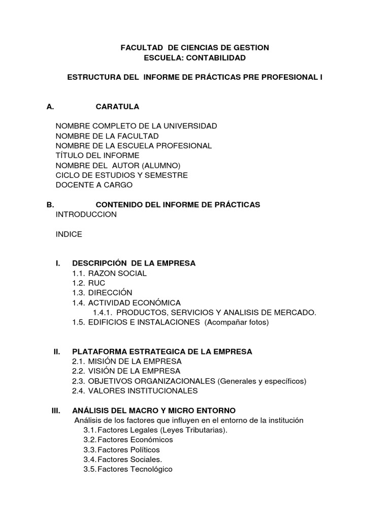 Estructura Del Informe Final Ppp I Docx Accounting Planning