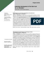 nacif.pdf.pdf