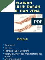 Kelainan Arteri Dan Vena