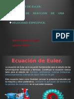 Ecuación de Euler.pptx