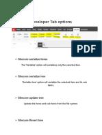 developer tab options