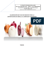 Trabajo de Plan de Negocio de Cebolla Para El Mercado de Canada PDF