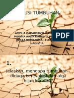 4 Evolusi Tumbuhan