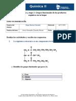 etapa 2. Grupos funcionales de los productos orgánicos.doc