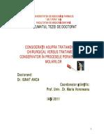 Rezumat IGNAT ANCA.pdf