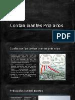 Contaminantes-Primarios
