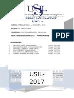 Hidraulicaproyectoinformativo.docx2