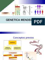 BIO4MUNI3N1PEN_Genetica_Mendeliana.ppt