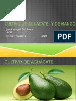 fitopatologia-160216013355.pptx