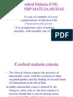 3 Cerebral Malaria
