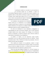 INFORME de Pasantias Aremis-1