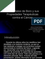 presentacin-1228983493979290-1