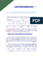 CELULAS PROCARIOTAS.docx
