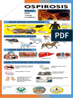 Stand Banner Leptospirosis