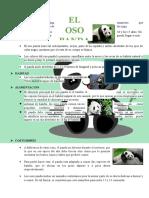 Oso Panda Aileen
