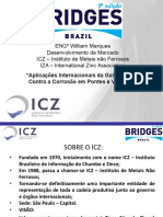 Bridges-Brazil-2013 ICZ