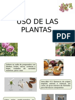 USO DE LAS PLANTAS GALENO.pptx