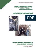 Caracterización Ocupacional Sector Minero.pdf