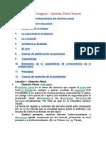Derecho Penal Paraguayo