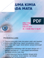 REFERAT TRAUMA KIMIA PADA MATA.pptx