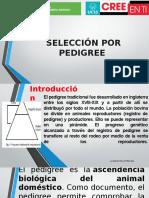 Selección Por Pedigree