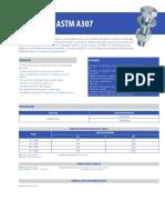 Fixadores_Estruturais_A307.pdf