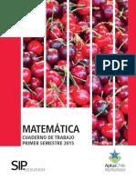 2) Cuadernillo de Trabajo Matemática 1_básico Primer Semestre 2015