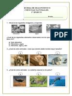Diagnostico Ciencias Naturales (2)