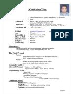 Curriculum Vitae Master -Egypt Nov2011