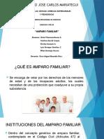 Amparo Familiar Expo