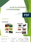 Adaptaciones de los artrópodos a la hematofagia