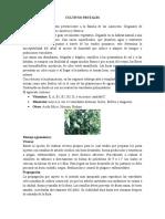 Cultivos Frutales.docx