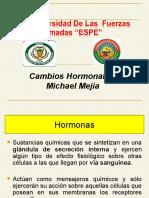 Michael Mejía Cambio Hormonal