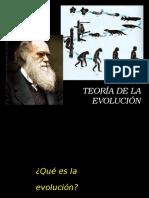 Evolucion Del Hombre Segun Charles Darwin