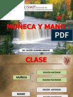 Muñeca y Mano 22 03 17