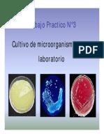 seminario-nc2b03-cultivo-de-microorganismos.pdf