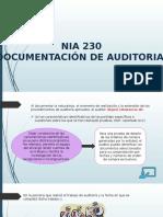 PRESENTACION DE nia 230 y 530