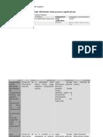 Plan Anual Individual Formato