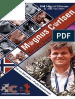 Magnus Carlsen, World Champion