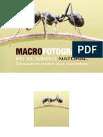 dzoom-zona-premium-macro-fotografia.pdf